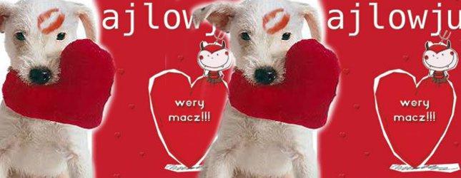Walentynkowe życzenia od Czytelników Kozaczka