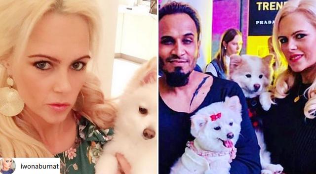 Iwona Burnat z Żon Hollywood zrobiła TO swojemu psu: Puknij się w głowę