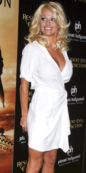 Pamela Anderson żoną po raz trzeci