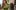Herbuś w babcinych rajstopach, Beyonce bez peruki