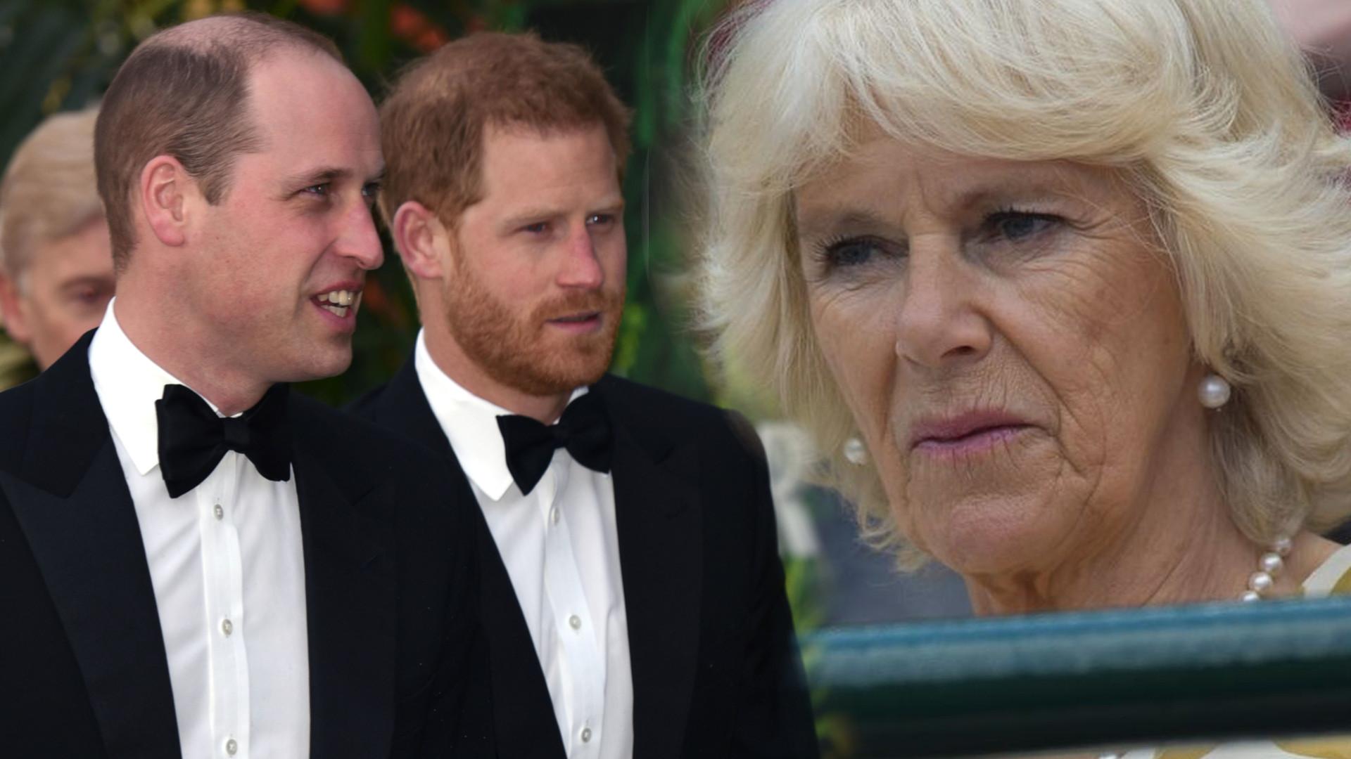 Co tak naprawdę książę William i książę Harry myślą na temat Camilli Parker-Bowles?